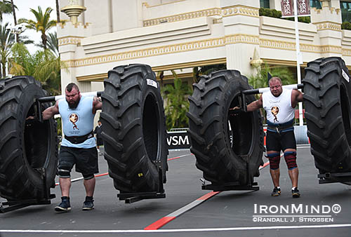 Eddie Hall (left) and Lauri Nami (right) battle it out in the Yoke Race during the qualifying round of the 2014 World's Strongest Man contest. IronMind® | Randall J. Strossen photo