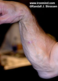 The Fisher Forearm has been notching wins at the arm wrestling table for 25 years and today it turns 50. IronMind® | Randall Strossen photo.
